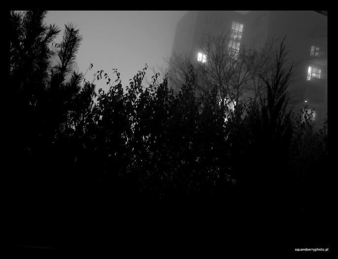 Mgła II